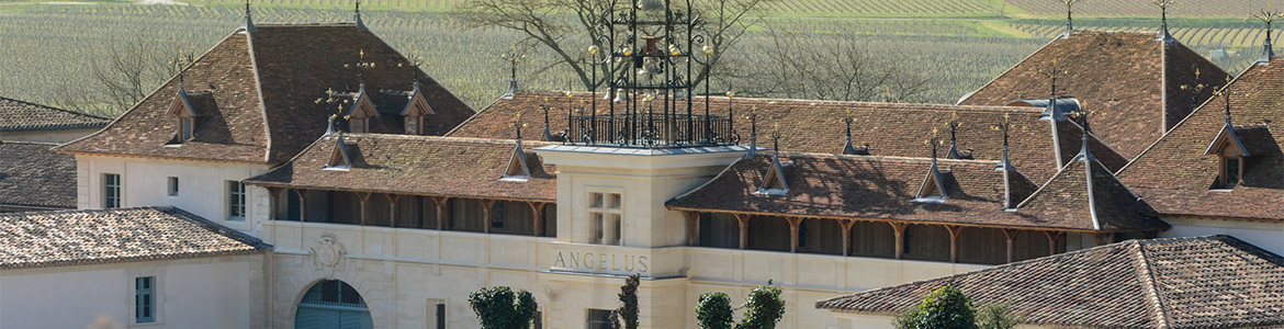 Ifavine wineries for Chateau angelus